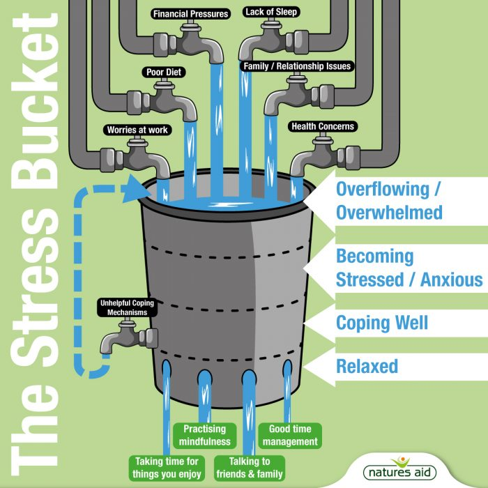 Stress Bucket Diagram
